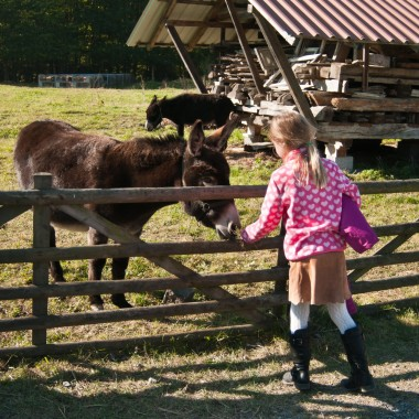 Kind mit Esel