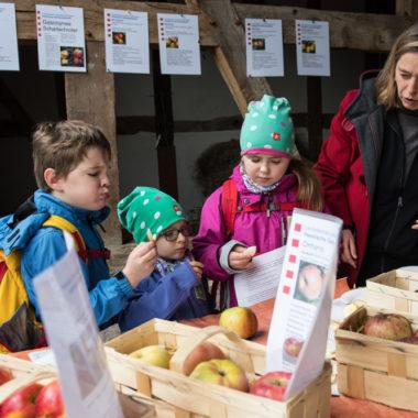 Kinder auf dem Apfelfest