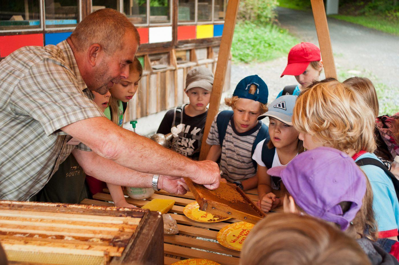 Bienenführung für Kinder