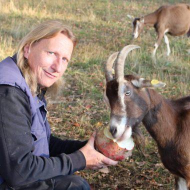 Cheflandwirt Volker Weber beim Ziegenfüttern