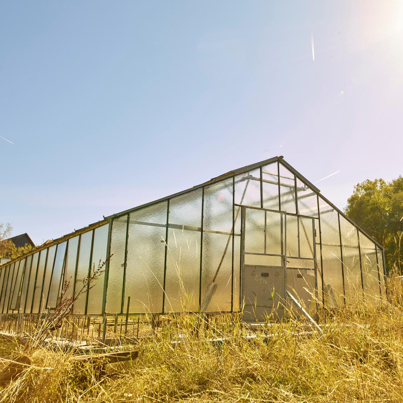 Außenansicht der Gärtnerei aus Rechtenbach