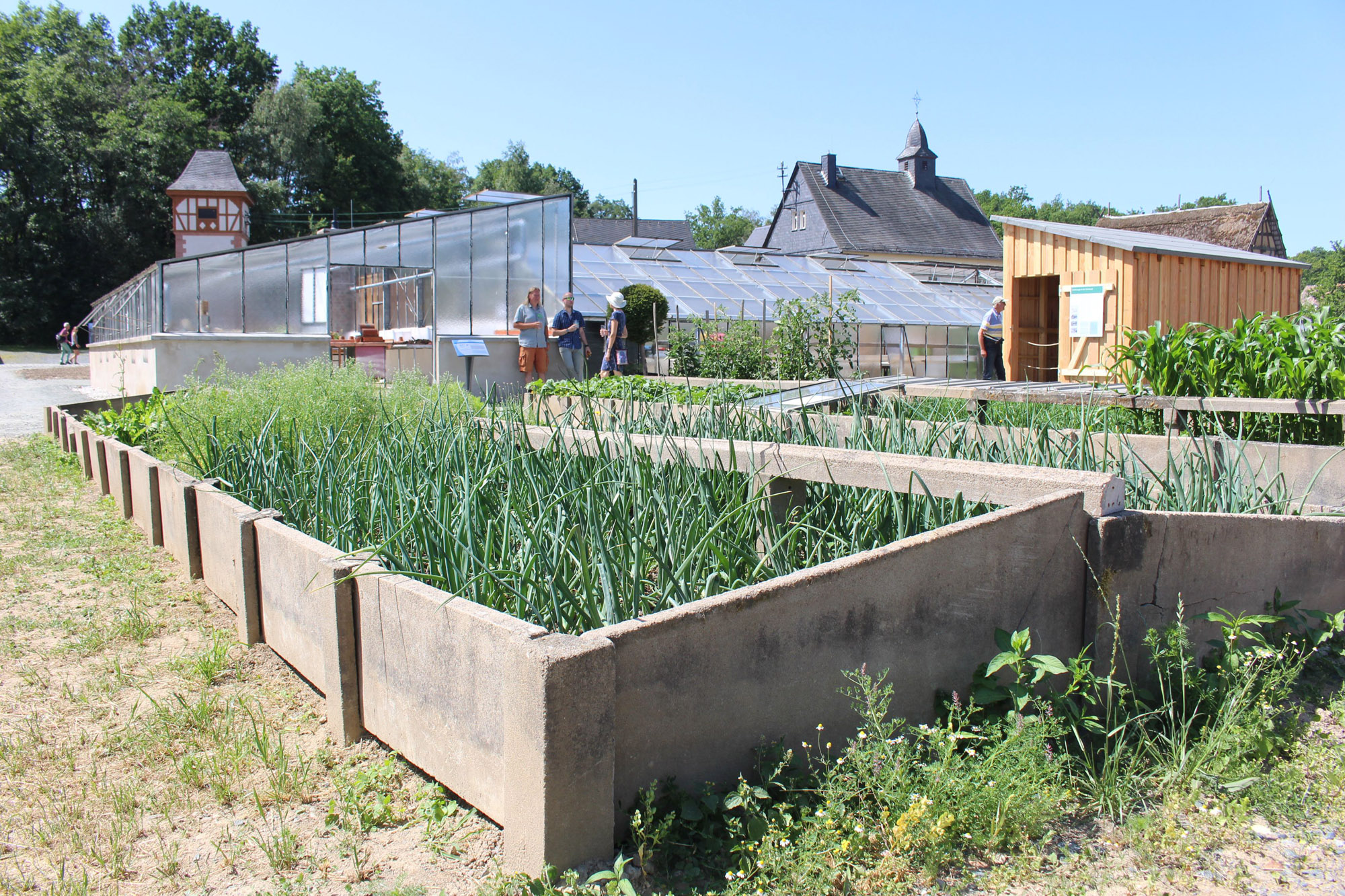 Große Beetkästen befinden sich vor dem Gärtnereigebäude, das man im Hintergrund erkennen kann.