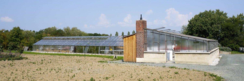Gärtnerei aus Rechtenbach