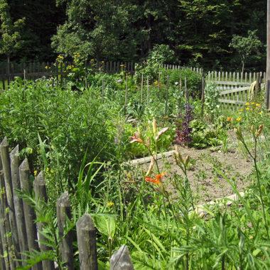 Blühender Nutzgarten im Sommer