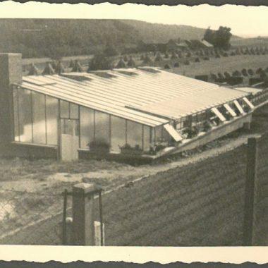 Historische Aufnahme der Gärtnerei aus Rechtenbach