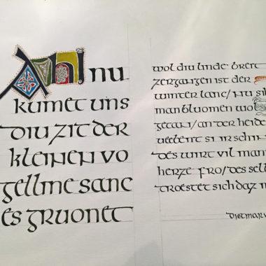 Irische Halbunziale: Rundschrift aus dem irisch-angelsächsischen Raum des 8./9. Jahrhunderts