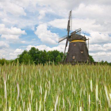 Kappenwindmühle aus Borsfleth