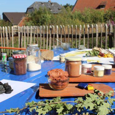 Holzkohle, Färberkamille, Eichenblätter und weitere Materialien für Pflanzenfarben auf einem Tisch. Im Hintergrund der Färbergarten