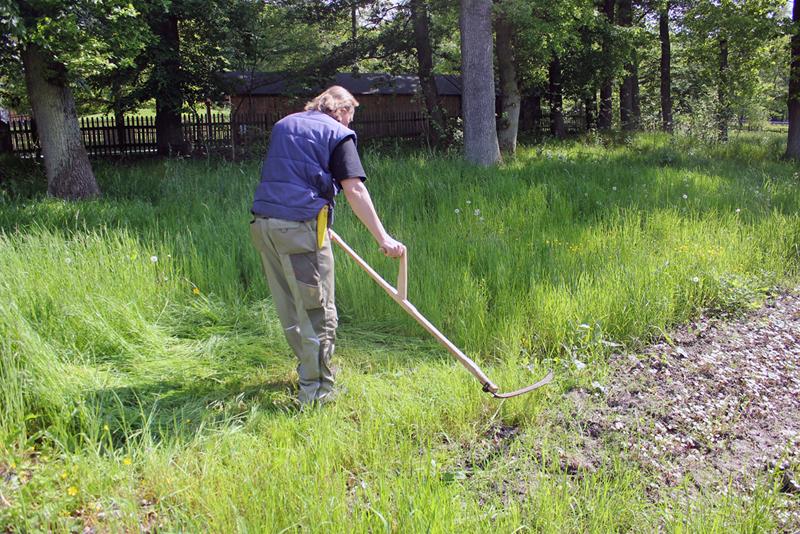 Landwirt beim Grasschnitt mit der Sense