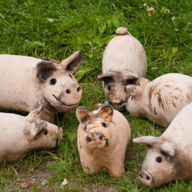 Keramikschweinchen auf grüner Wiese