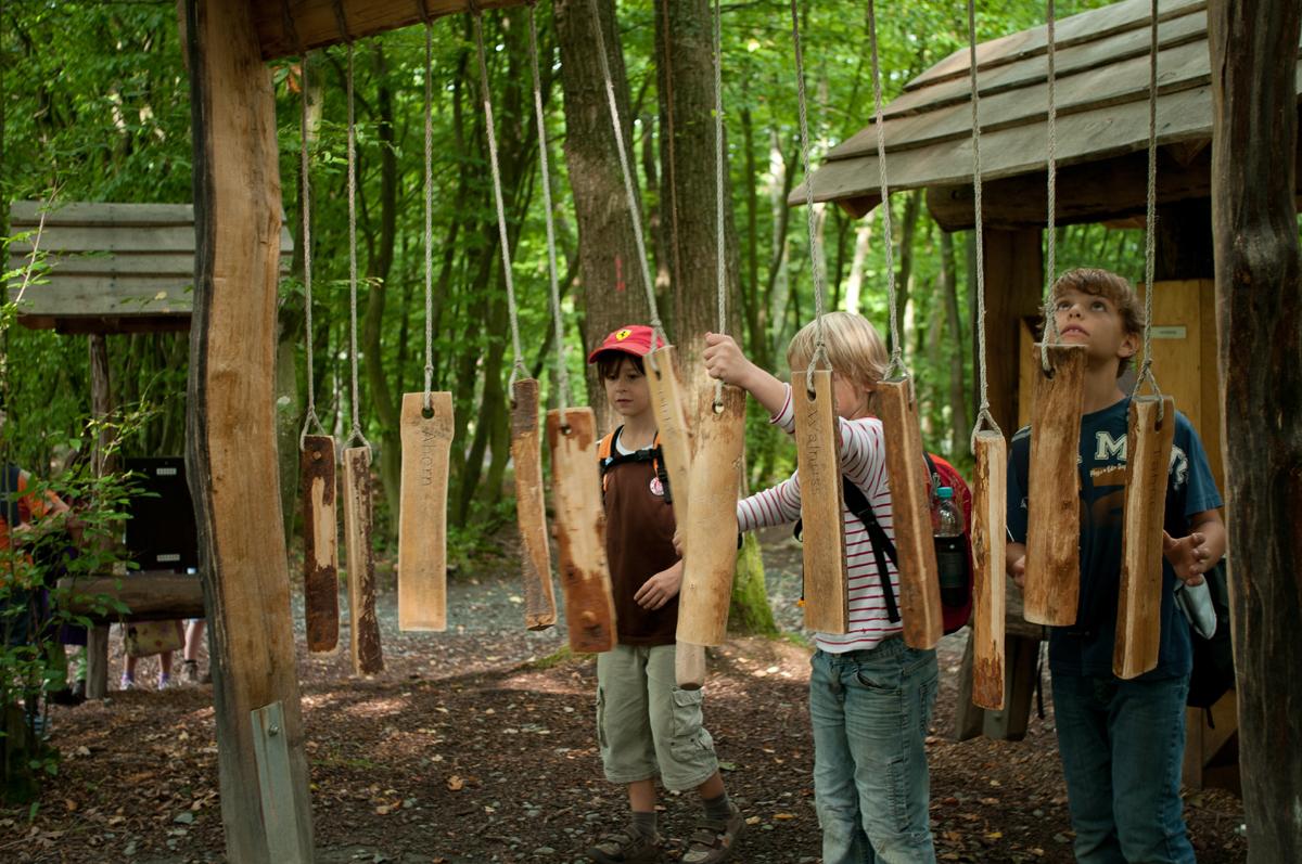 Kinder auf dem Walderelbnispfad