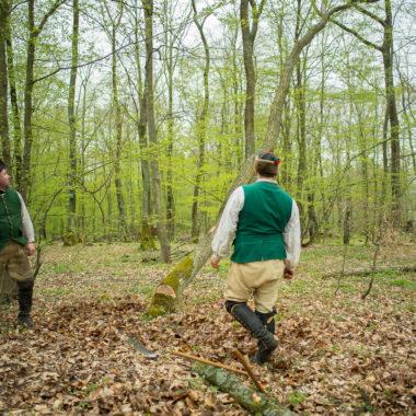 Historische Forstjäger bei Baumfällarbeiten im Wald